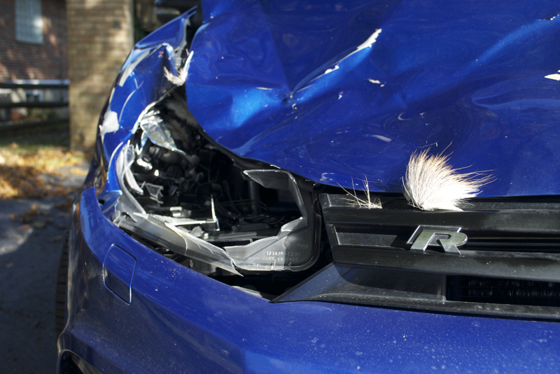 golf_r-deer_strike_damage-2.jpg